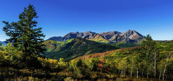 Photograph - Mount Timpanogos by TL Mair
