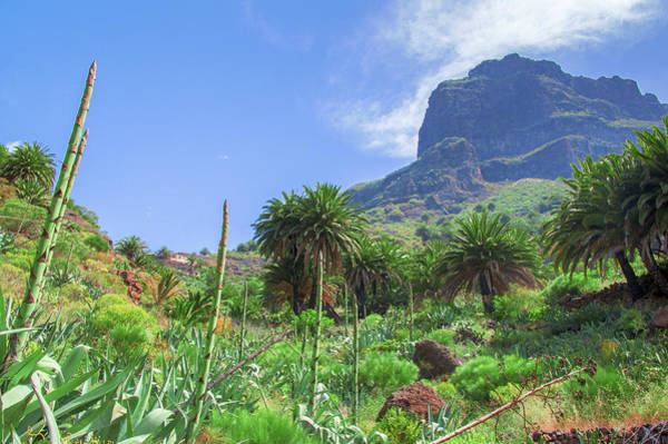 Photograph - Mountain Above Masca by Sun Travels