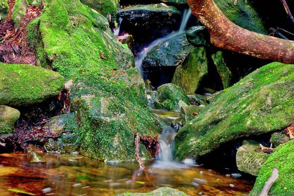Photograph - Mountain Brook by Meta Gatschenberger