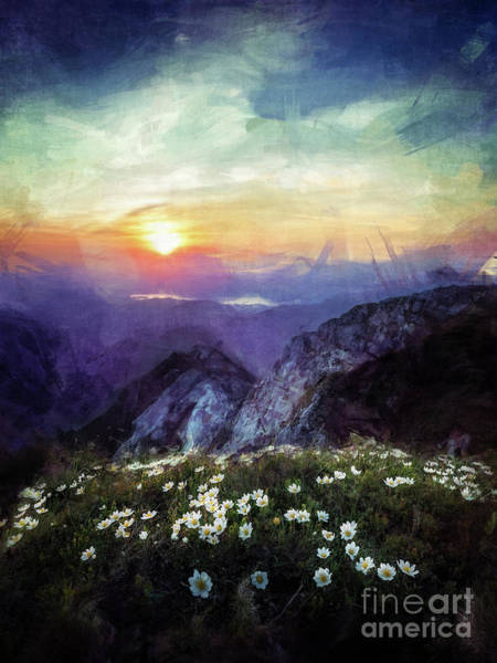 Digital Art - Mountain Flowers At Sunset by Phil Perkins