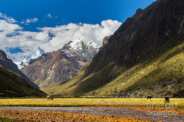 Wall Art - Photograph - Mountain Landscape In The Andes, Peru by Calin Tatu