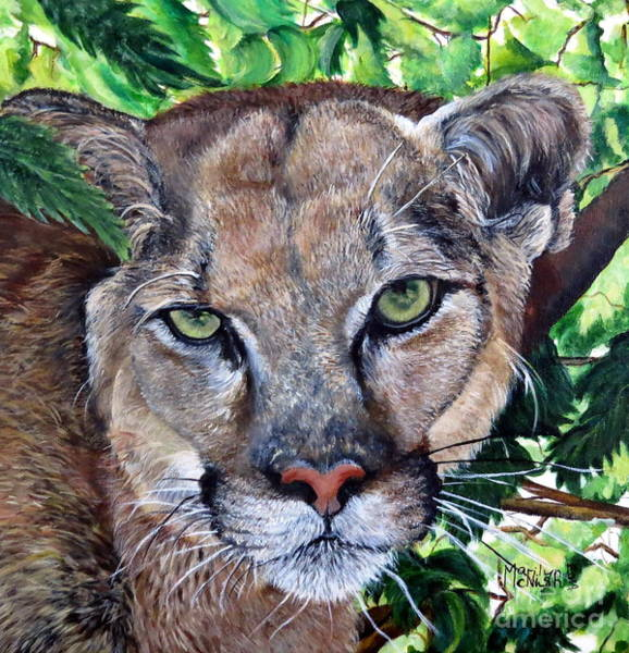 Painting - Mountain Lion Portrait by Marilyn McNish