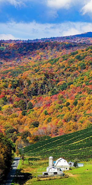 Photograph - Mountain Palette by Dale R Carlson
