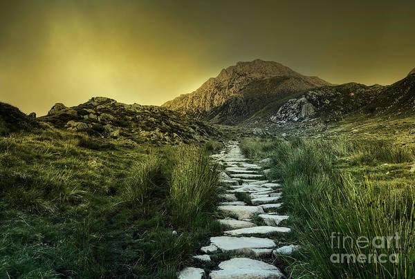 Photograph - Mountain Path by David Lichtneker