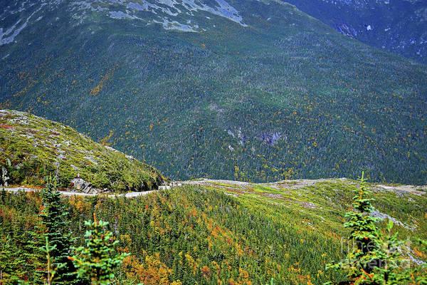 Photograph - Mountain Road by Patti Whitten