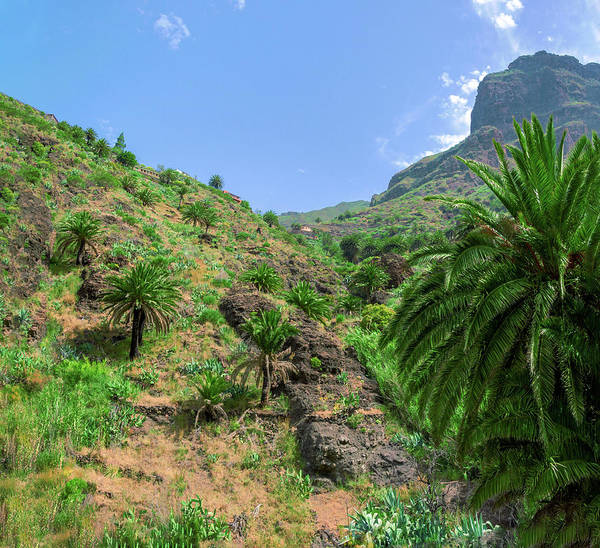 Photograph - Mountain Slopes Of Masca by Sun Travels