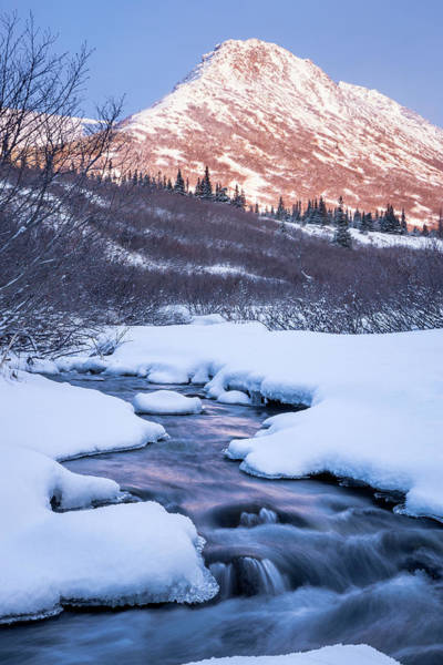 Photograph - Mountain Stream In Winter by Tim Newton