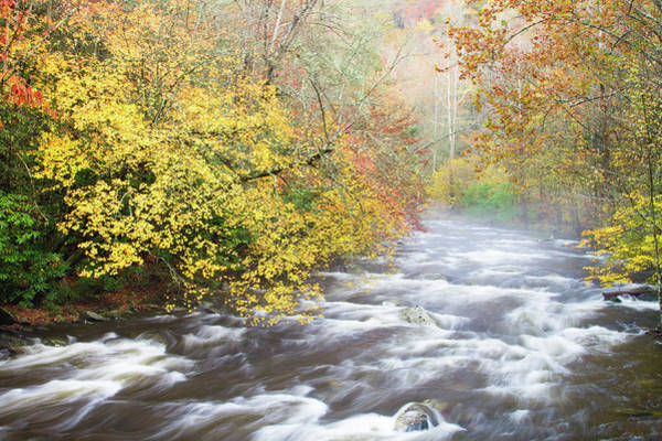 Southern Usa Photograph - Mountain Stream With Mist And Fall by Bill Swindaman