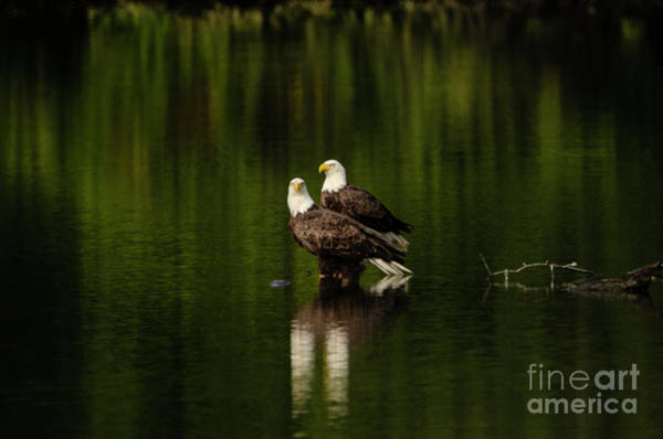 Brinton Photograph - Mr And Mrs by Judy Wolinsky