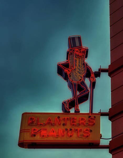 Wall Art - Photograph - Mr. Peanut by Mountain Dreams