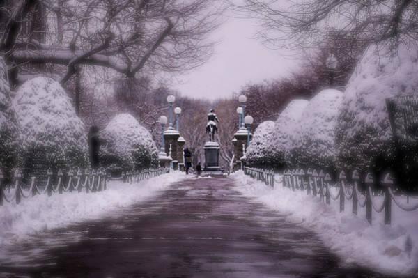 Photograph - Mr Washington In Winter Bliss by Christina Maiorano