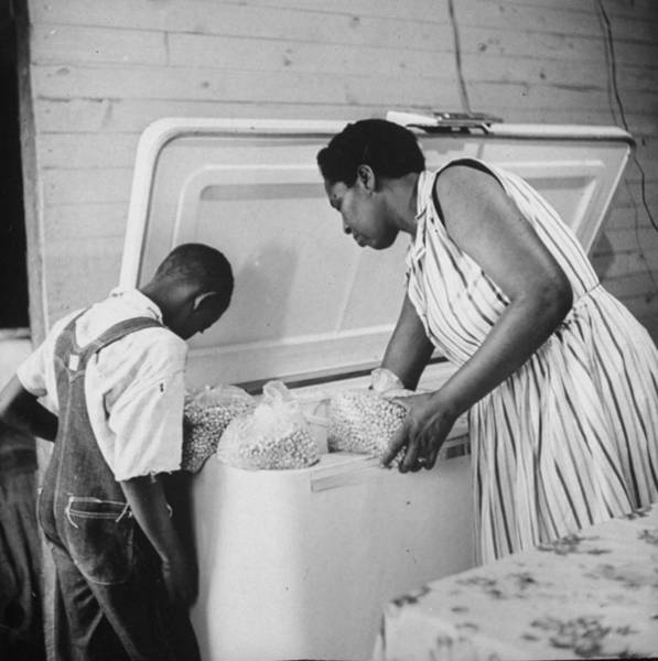 Wall Art - Photograph - Mrs. Willie Causey & Family by Gordon Parks