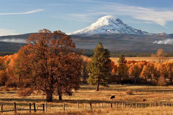Mt. Adams Photograph - Mt. Adams In Autumn by Larry Gloth