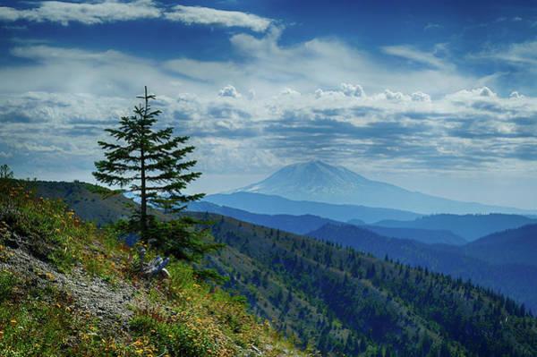Photograph - Mt Adams Seen From Mount St. Helens by Steve Estvanik