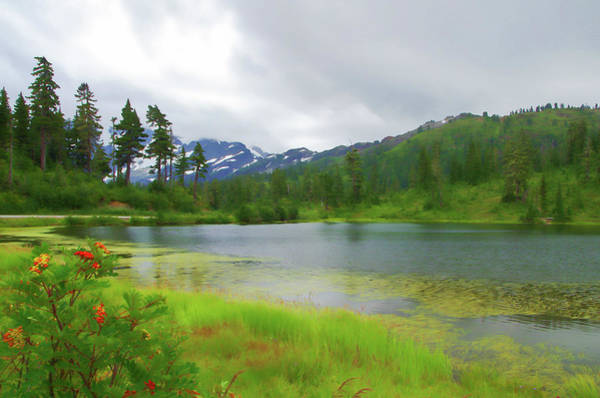 Digital Art - Picture Lake by Marilyn Wilson