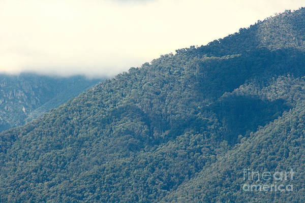 Photograph - Mt Bogong In The Autumn by Joy Watson