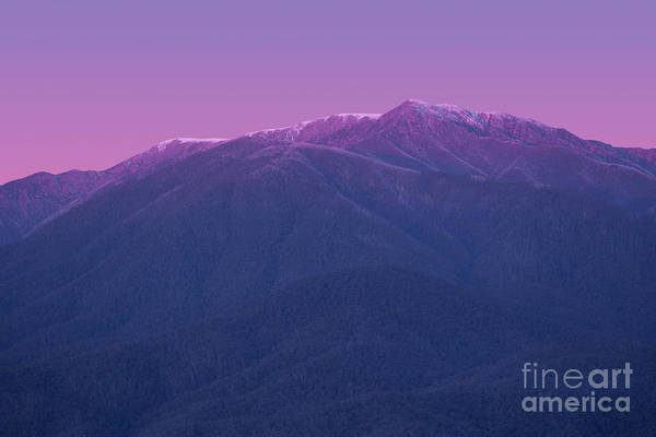 Mounted Photograph - Mt Bogong by Ivan Krpan