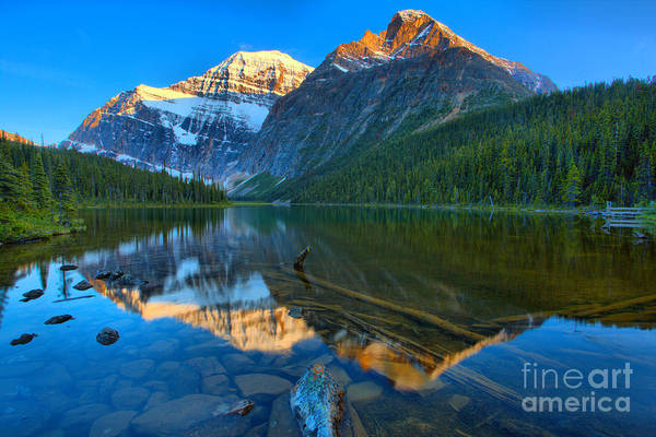 Photograph - Mt. Edith Cavell Evening Reflections by Adam Jewell