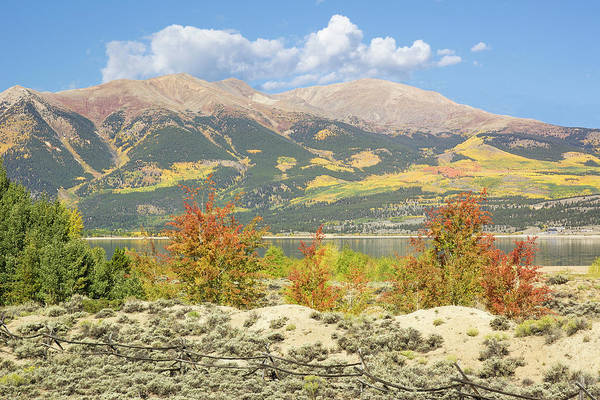 Photograph - Mt. Elbert Autum 2 by Aaron Spong