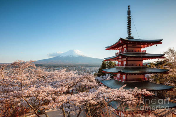 Wall Art - Photograph - Mt. Fuji And Pagoda In Spring, Japan by Matteo Colombo
