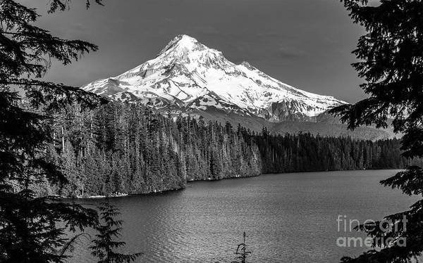 Wall Art - Photograph - Mt Hood by Jim Chamberlain