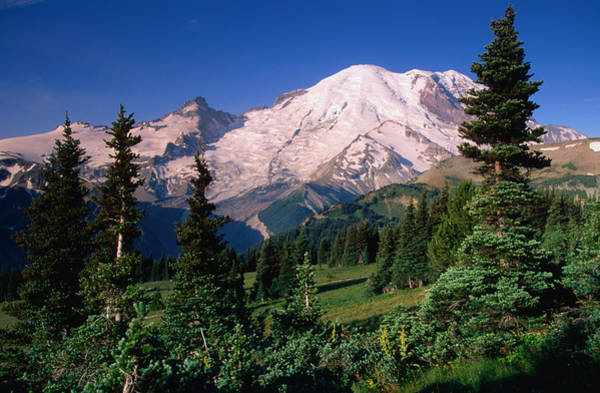 Mt Rainier And Emmons Glac1er From The Art Print