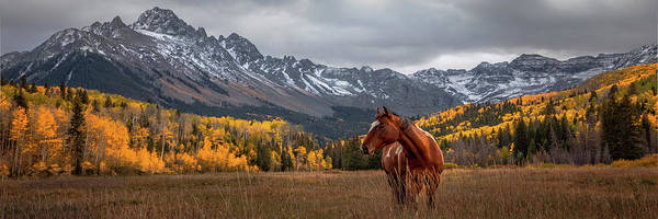Photograph - Mt Sneffles And Horse by Ryan Smith