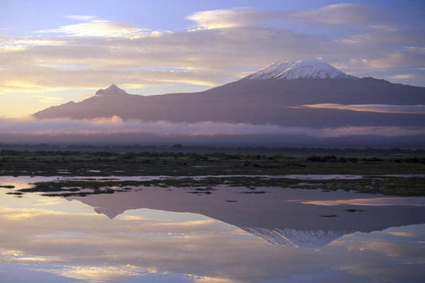 Emotion Photograph - Mt.kilimanjaro Sunrise Amboseli Kenya by Stan Osolinski
