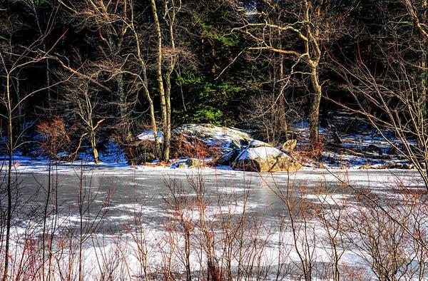 Photograph - Mud Pond Frozen by Tom Singleton