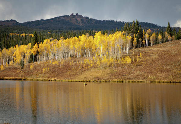 Steamboat Springs Photograph - Muddy Pass Ake And Aspen Trees, Colorado by Karen Desjardin
