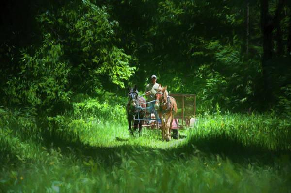 Photograph - Mule Team by Dan Friend