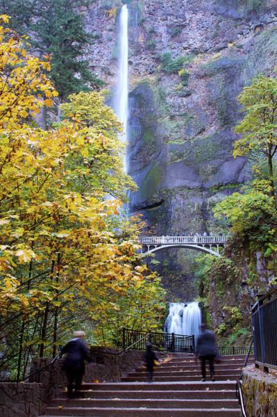 Photograph - Mulltnomah Falls Oregon 070419 by Rospotte Photography