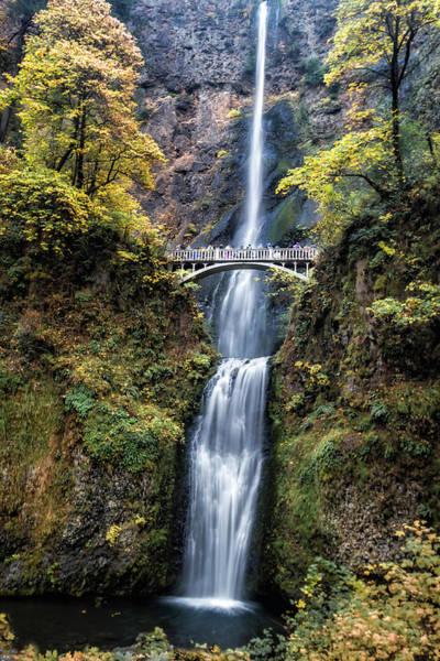 Wall Art - Photograph - Multnomah Falls  2307 by Karen Celella