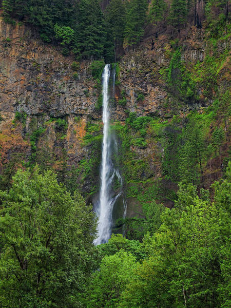 Photograph - Multnomah Falls 4 by Thomas Hall