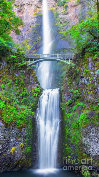 Photograph - Multnomah Falls by Dheeraj Mutha