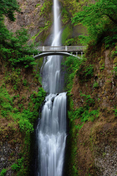 Photograph - Multnomah Falls  by Emmanuel Panagiotakis