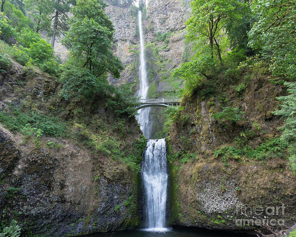 Photograph - Multnomah Falls In The Columbia River Gorge In Oregon Dsc6514-2 by Wingsdomain Art and Photography