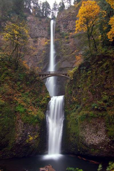 Object Photograph - Multnomah Falls by Ted Ducker Photography