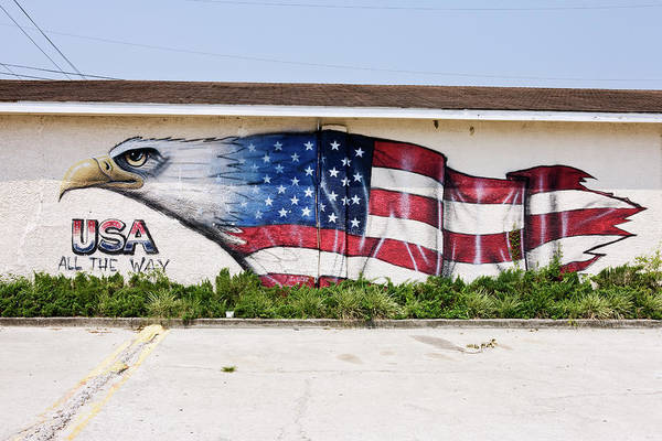 South Carolina Photograph - Mural Of Bald Eagle Merging With by Simon Willms