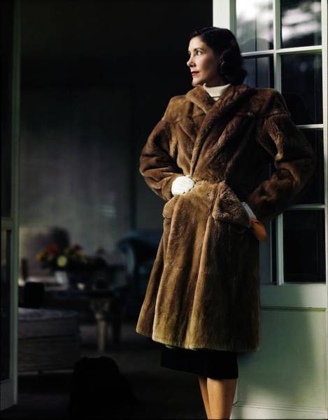 Polo Photograph - Muriel Phipps In A Maximillian Coat by Horst P. Horst