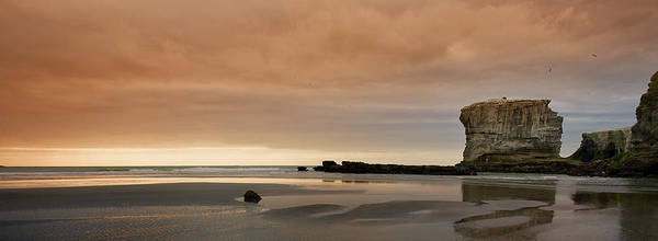 Wall Art - Photograph - Muriwai Sundown by Mark Meredith