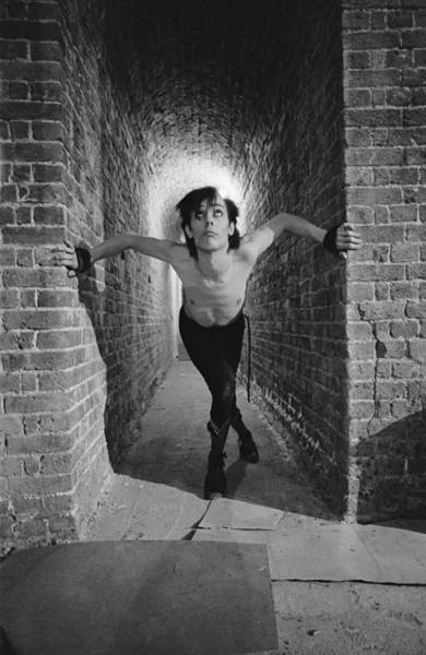 Roundhouse Photograph - Murphy Cornered by Fin Costello