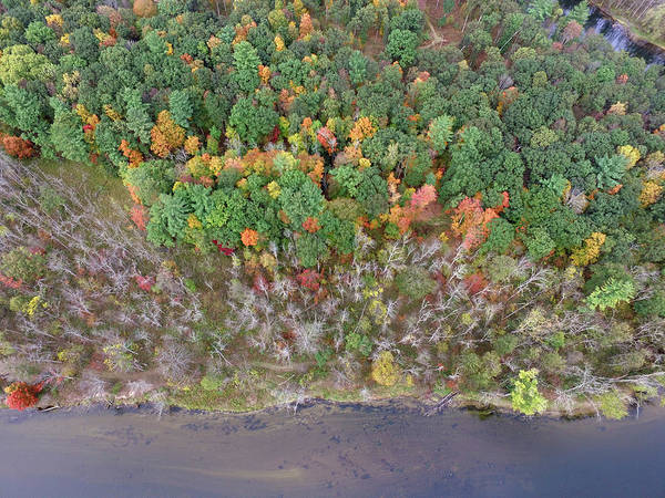 Photograph - Muskegon River 10121701 by Rick Veldman