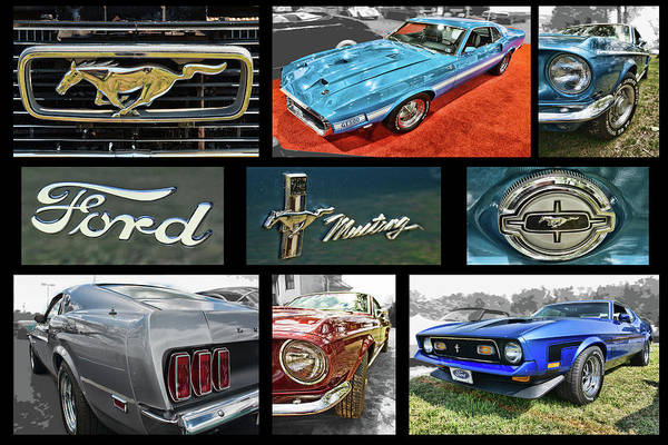 Photograph - Mustang Photo Collection by Daniel Adams