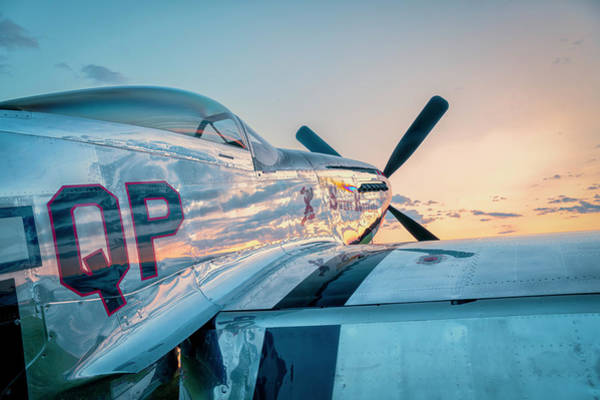 Photograph - Mustang Profile by Laura Hedien