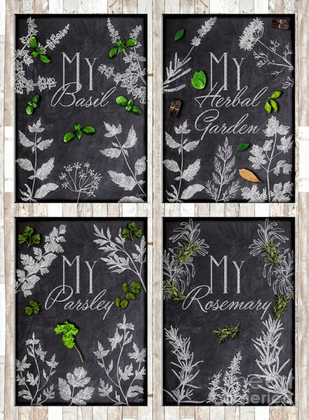 Wall Art - Mixed Media - My Herbal Garden - Basic Herbs Set by Mo T