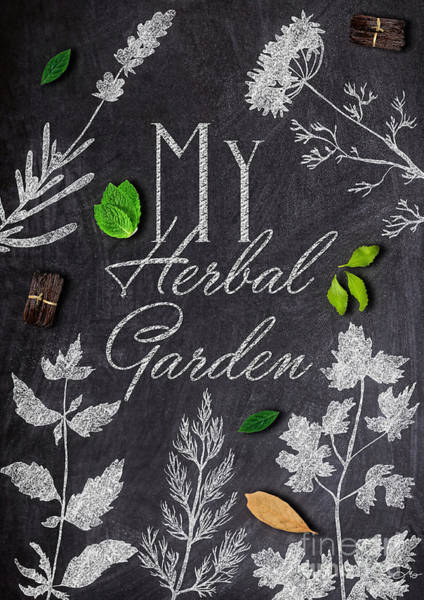Wall Art - Mixed Media - My Herbal Garden by Mo T