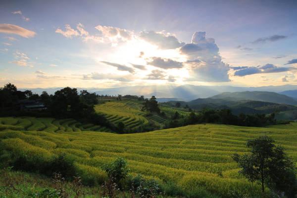 Thailand Photograph - My Paradise by Bug Eye Thailand
