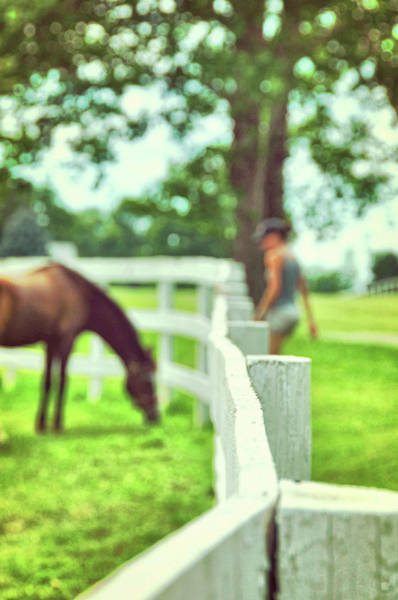 Photograph - My Pony Time by JAMART Photography