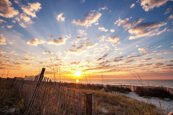 Wall Art - Photograph - Myrtle Beach Sunrise by Stephanie McDowell
